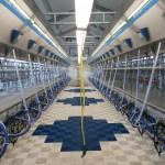 Казахстан, молочна ферма на 750 корів
